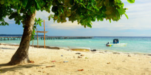 Maratua Island, Kakaban, Sangalaki, And Derawan Tour