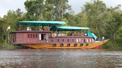 Palangkaraya River Cruise