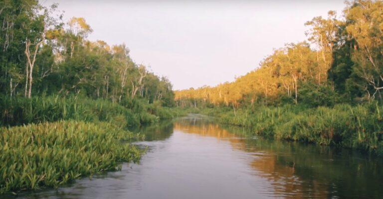Apakah Anda merindukan alam?